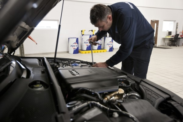Engine Inspection Hippo Prestige